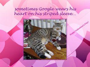 google-heart-sleeve1