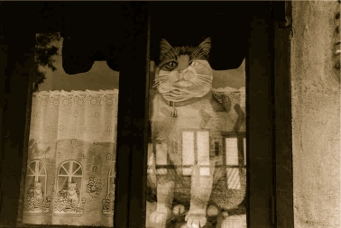 cat-window-sepia