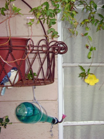 front-window