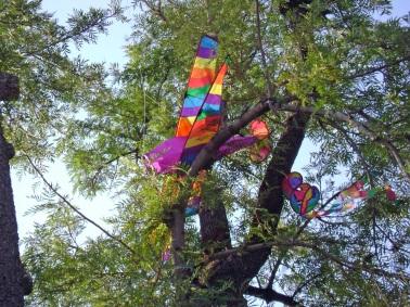 kite-in-tree
