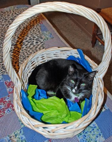 marbles-basket