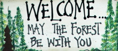 Welcome forest sign