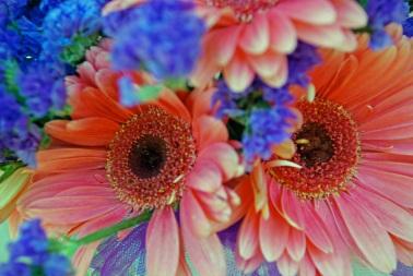 ch flower 2