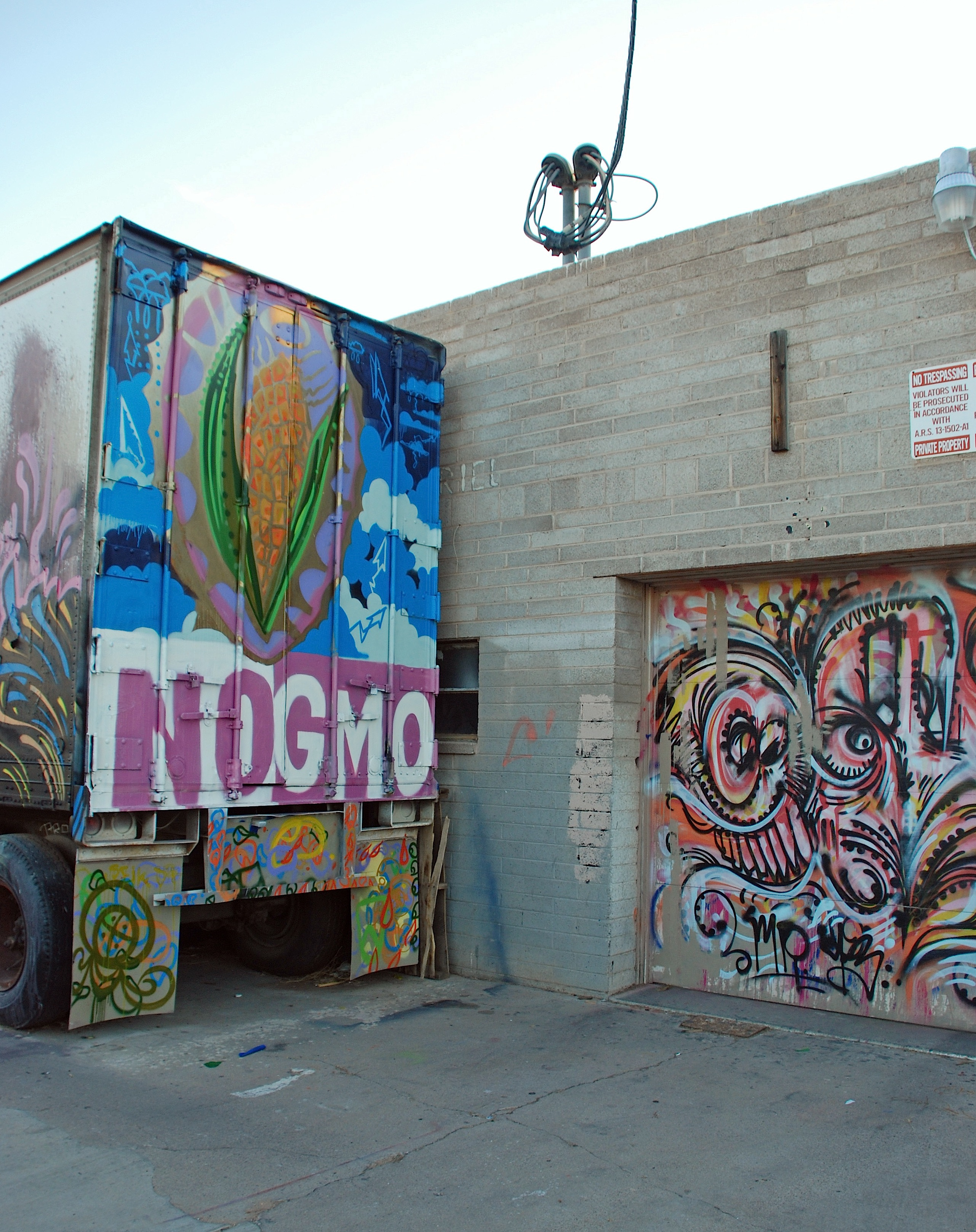 Roosevelt Art District Phoenix Dsc