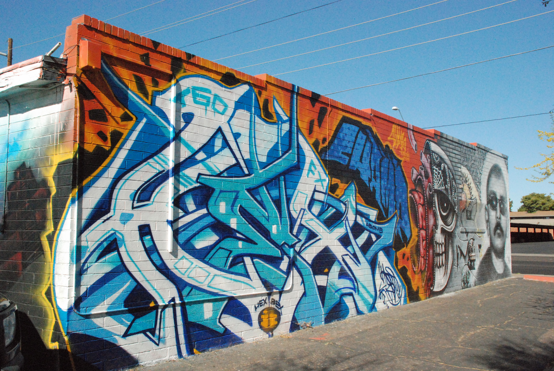 Arizona block wall murals gallery brayden studio for Birkenrinde wall mural