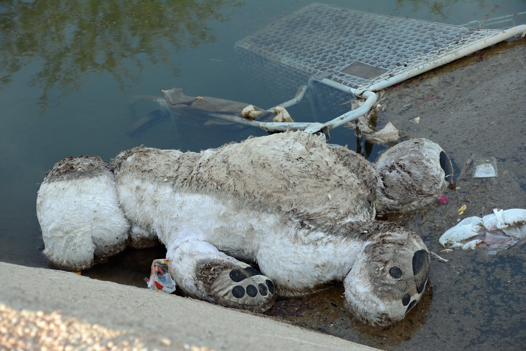 Stuffed in Canal