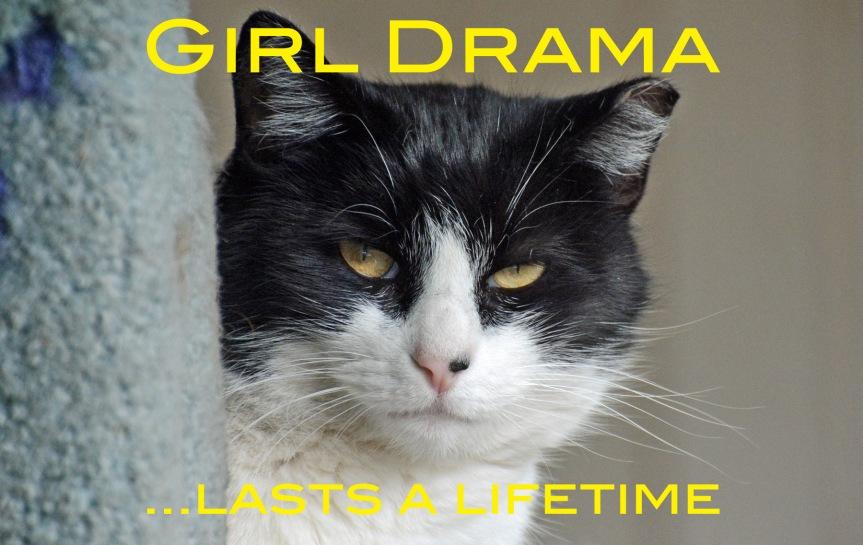 Ivory Girl Drama