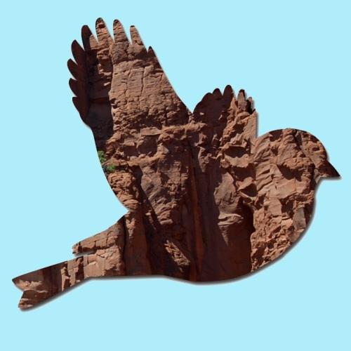 Sedona Bird_edited-1