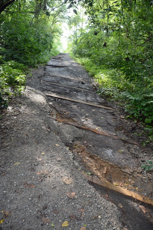 Trail Erosion 2