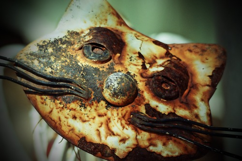 cat-face-metal_lomo