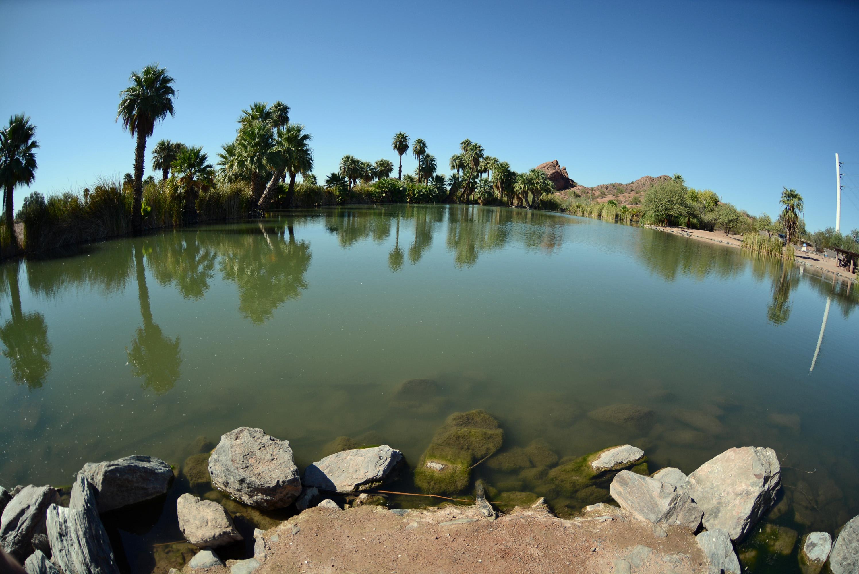 papago-pond-fisheye