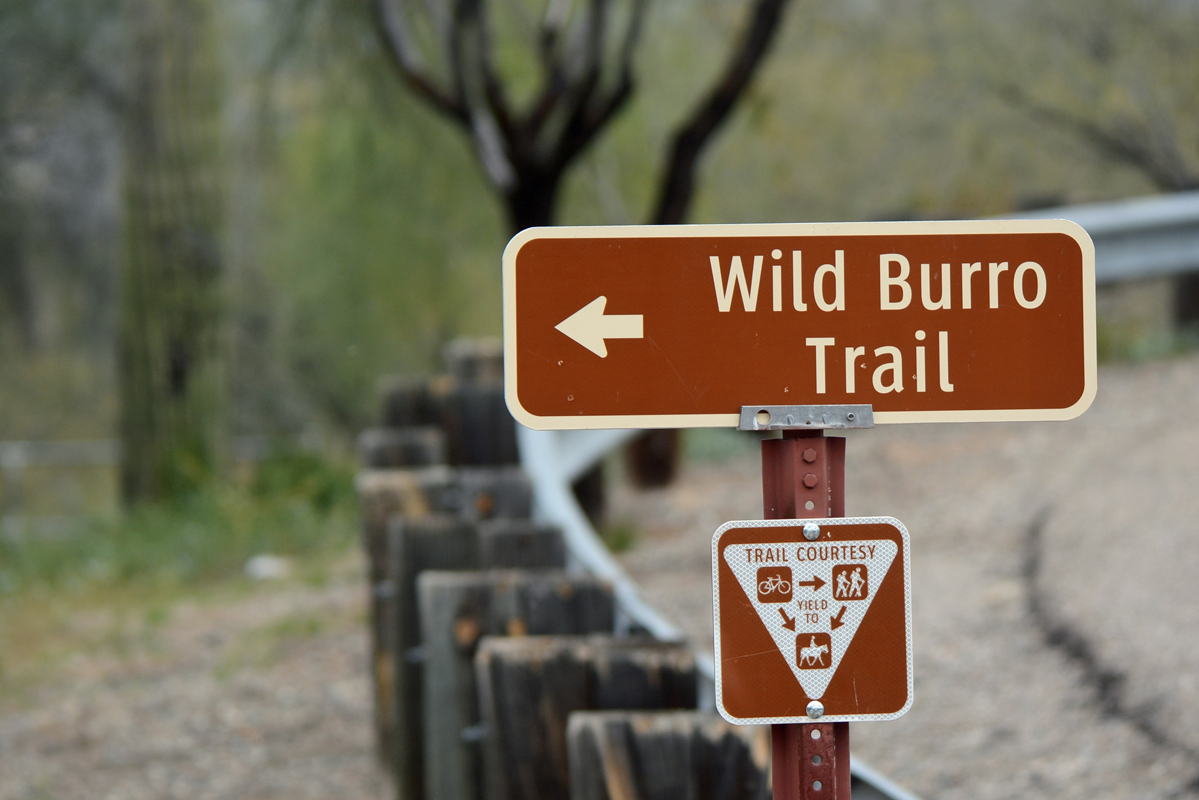 WB Trail Sign
